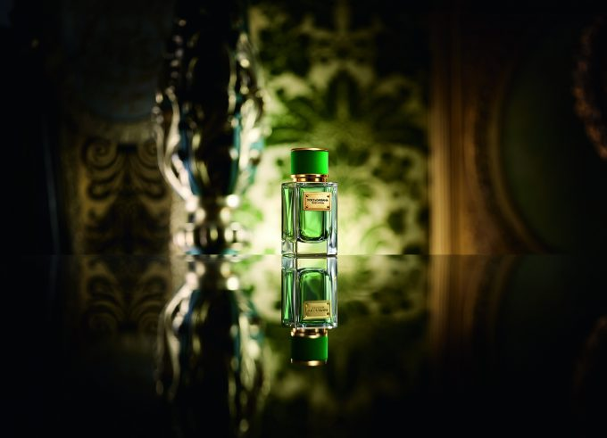 Dolce & Gabbana extends Velvet Collection with Cypress edition
