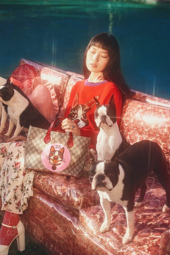 Gucci releases a special collection for Chinese New Year – and there are lots of dogs!