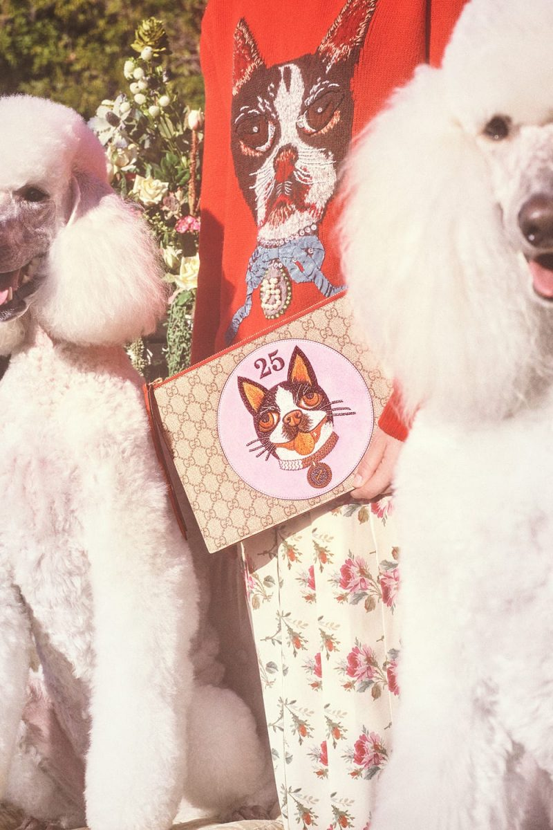 34bf2da68 Gucci s capsule collection celebrating the Chinese New Year. Courtesy of  Gucci. Photos by Petra Collins.